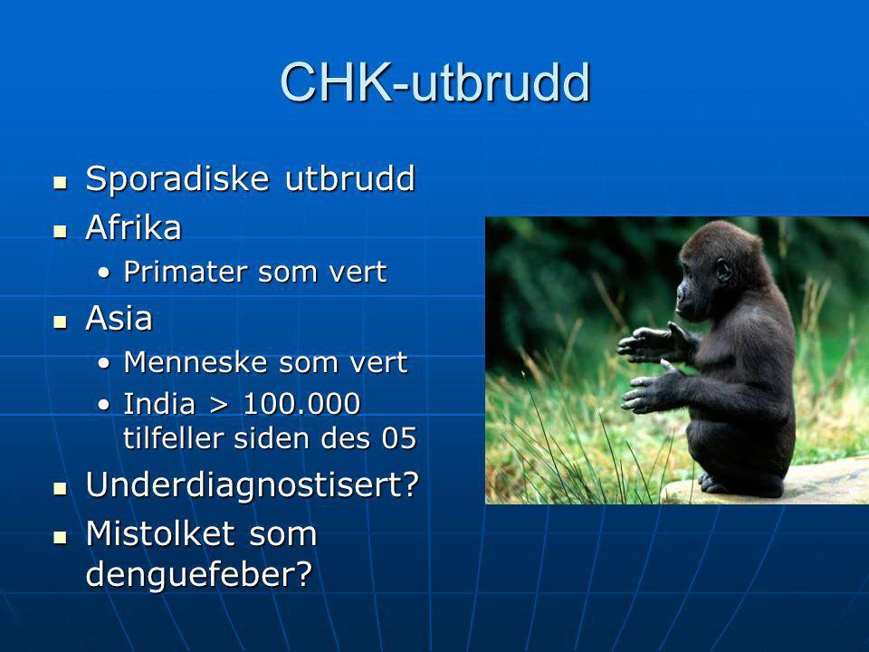 CHK-utbrudd Sporadiske utbrudd Afrika Asia Underdiagnostisert