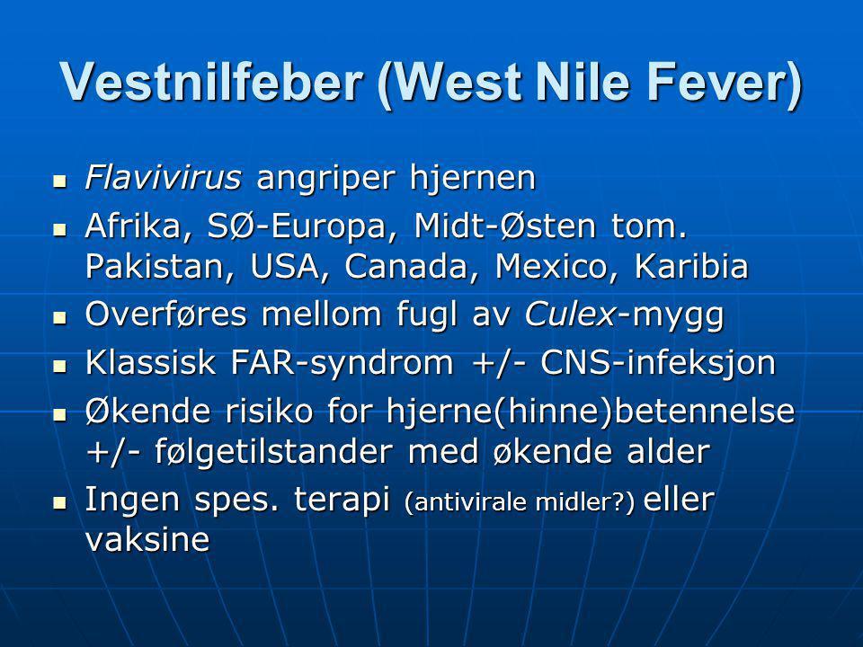 Vestnilfeber (West Nile Fever)