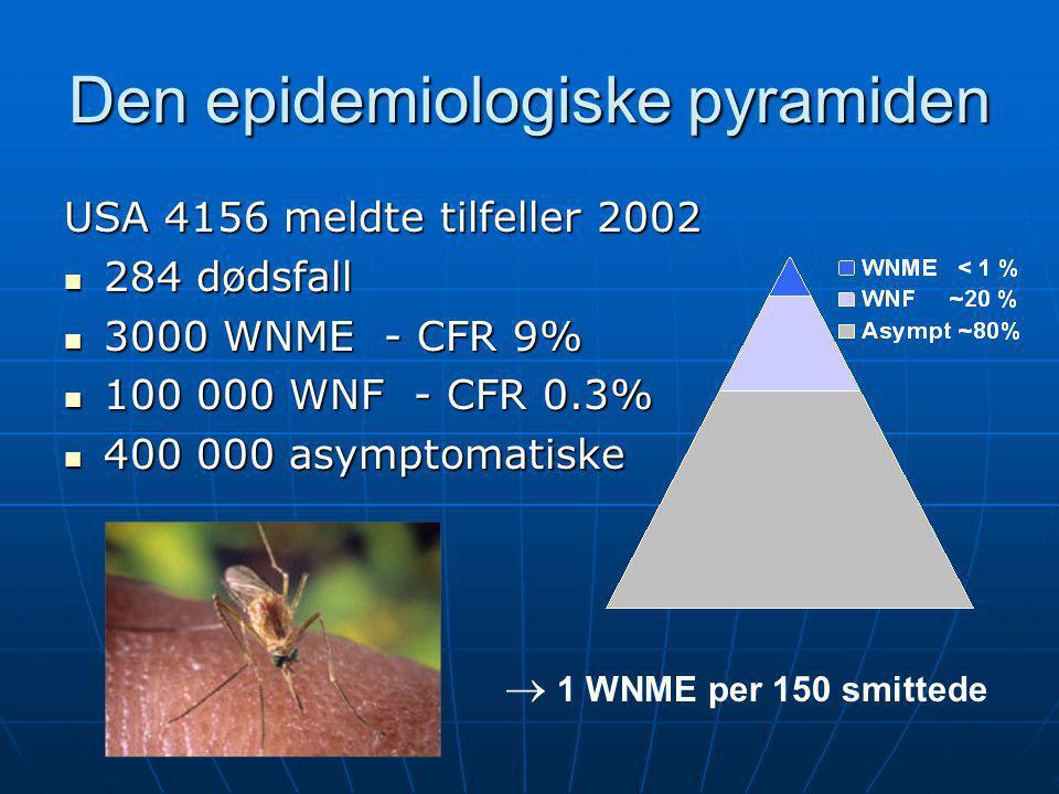 Den epidemiologiske pyramiden