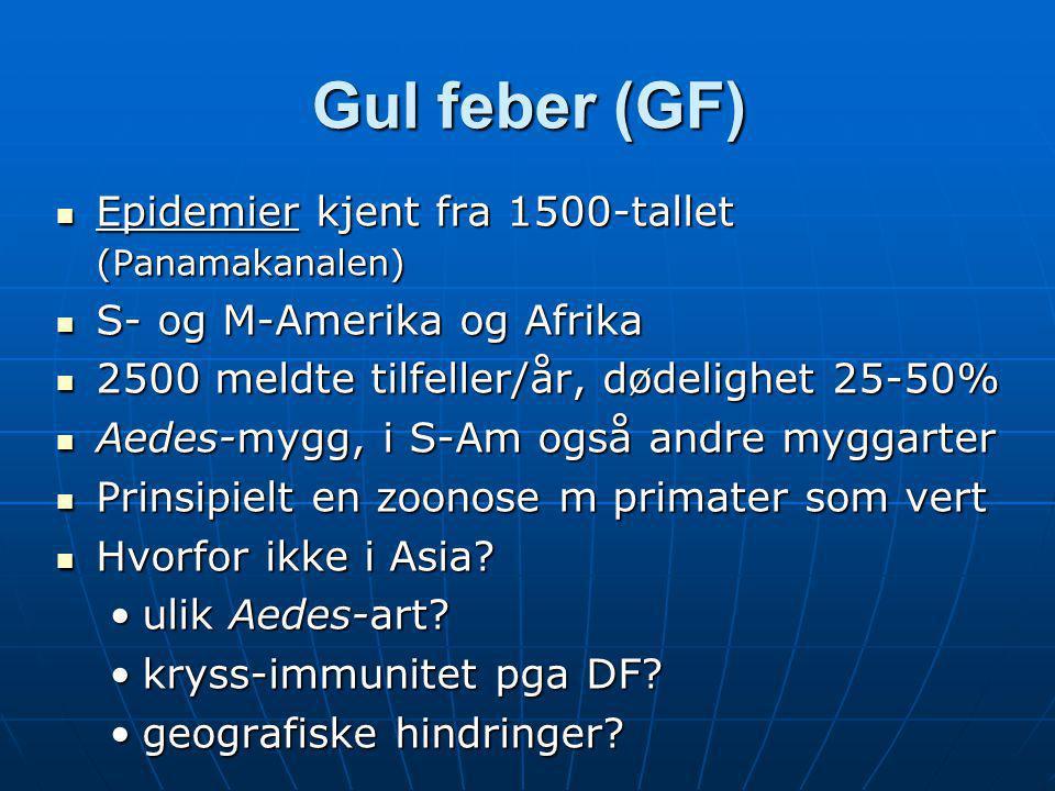 Gul feber (GF) Epidemier kjent fra 1500-tallet (Panamakanalen)