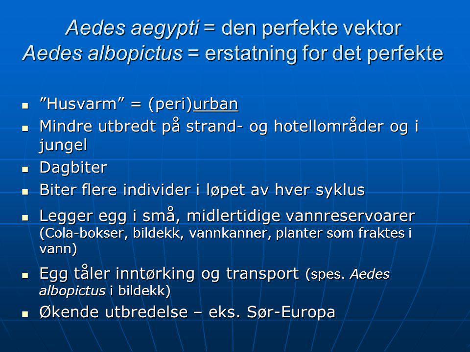 Aedes aegypti = den perfekte vektor Aedes albopictus = erstatning for det perfekte