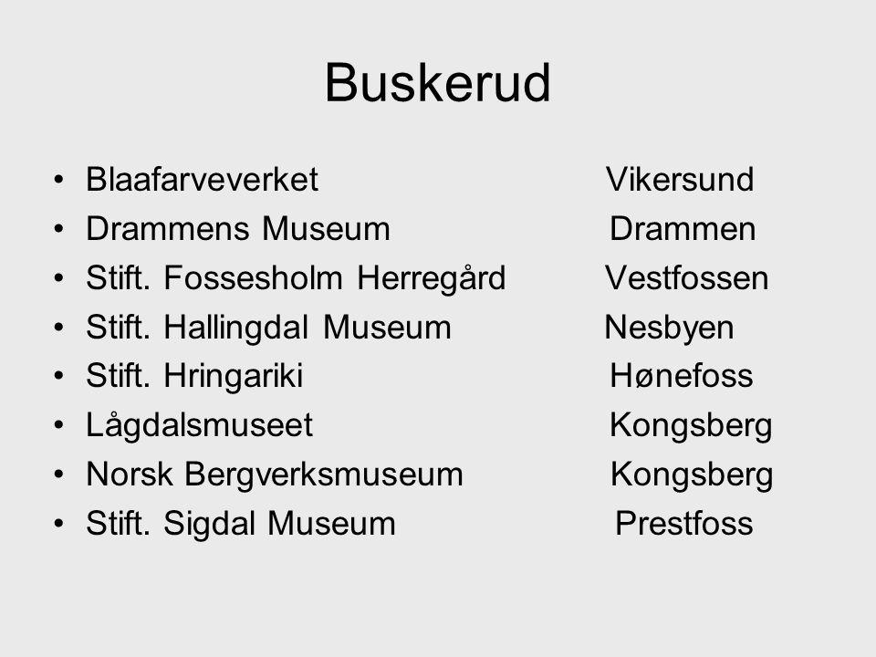 Buskerud Blaafarveverket Vikersund Drammens Museum Drammen