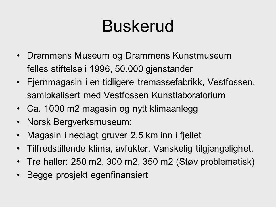 Buskerud Drammens Museum og Drammens Kunstmuseum