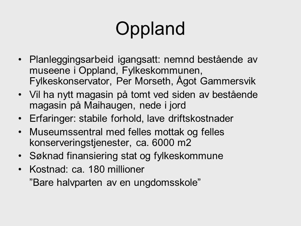 Oppland Planleggingsarbeid igangsatt: nemnd bestående av museene i Oppland, Fylkeskommunen, Fylkeskonservator, Per Morseth, Ågot Gammersvik.