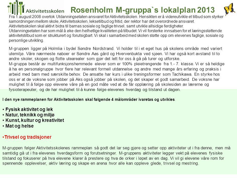Rosenholm M-gruppa`s lokalplan 2013