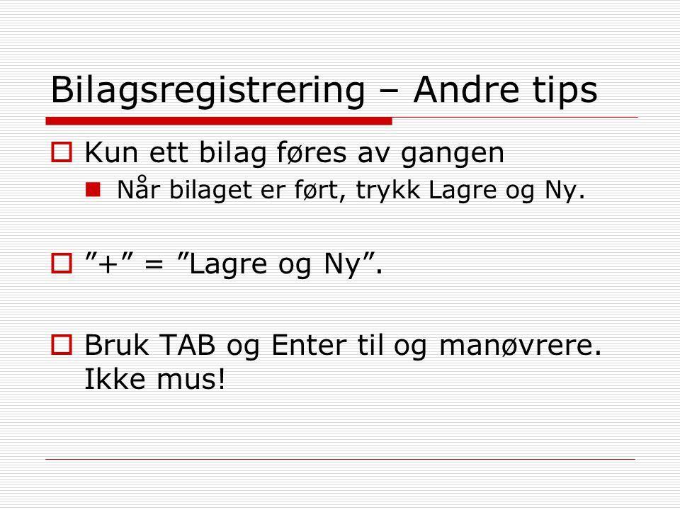 Bilagsregistrering – Andre tips