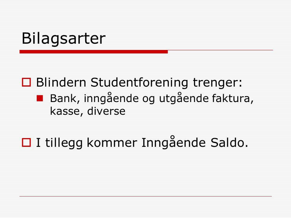 Bilagsarter Blindern Studentforening trenger: