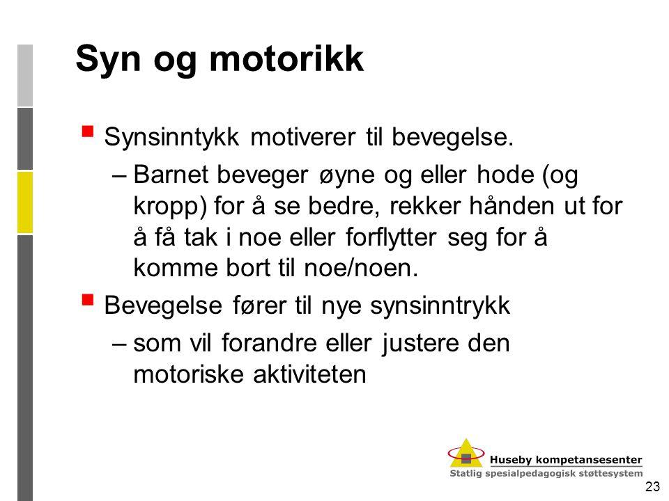 Syn og motorikk Synsinntykk motiverer til bevegelse.