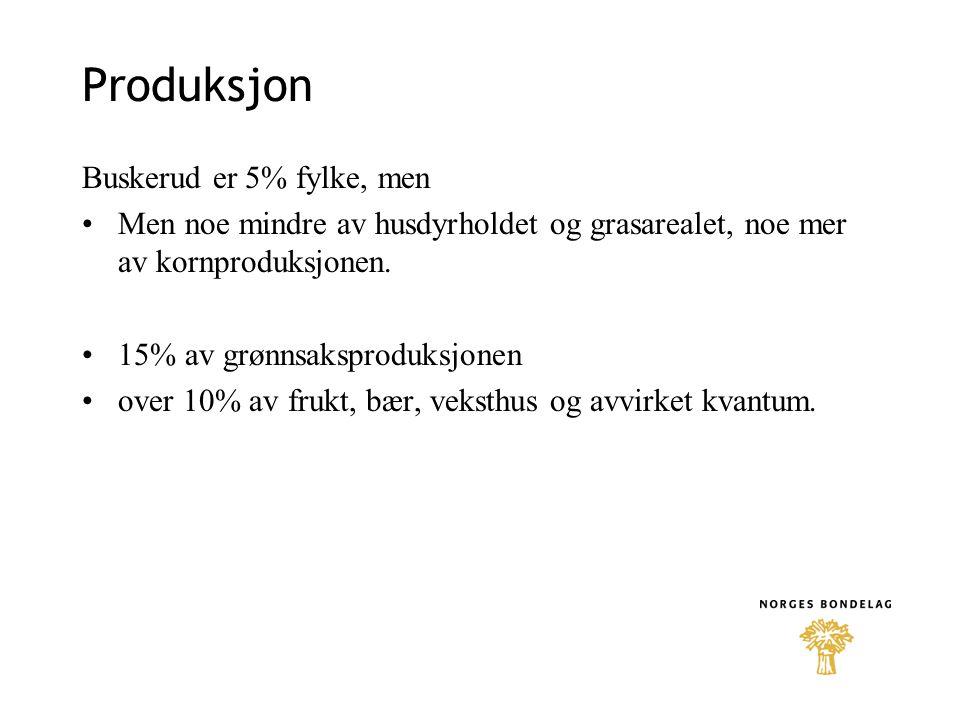 Produksjon Buskerud er 5% fylke, men