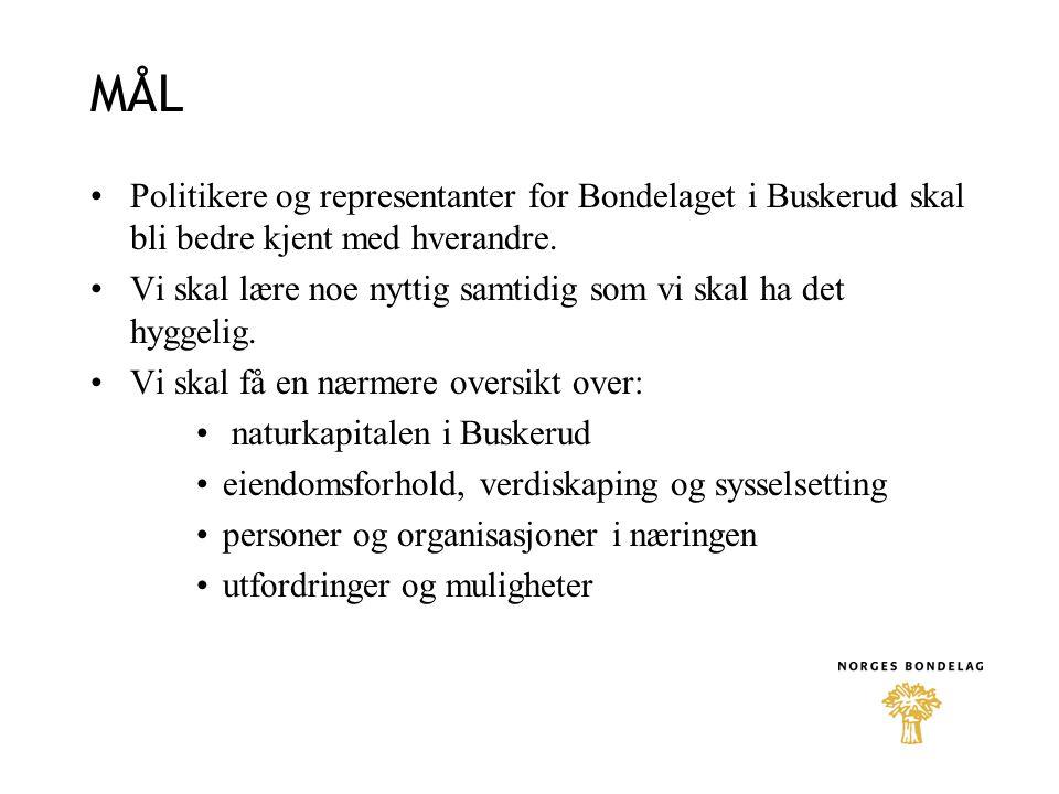 MÅL Politikere og representanter for Bondelaget i Buskerud skal bli bedre kjent med hverandre.