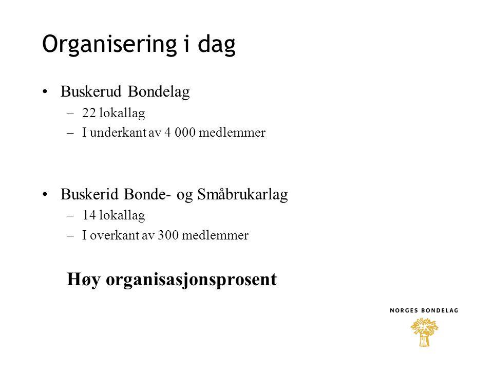 Organisering i dag Høy organisasjonsprosent Buskerud Bondelag