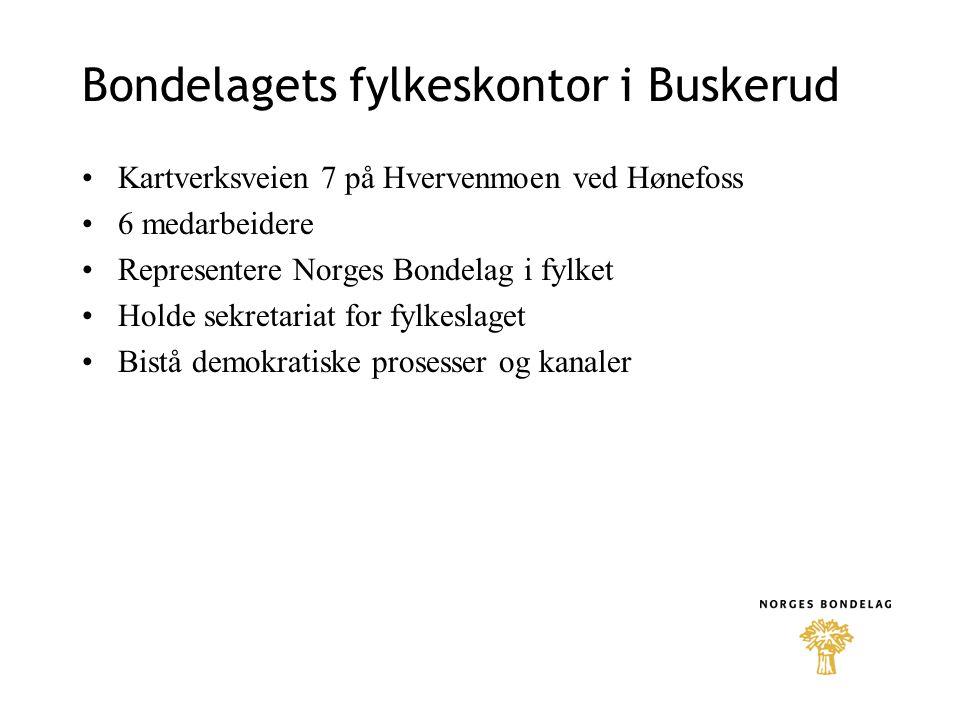 Bondelagets fylkeskontor i Buskerud