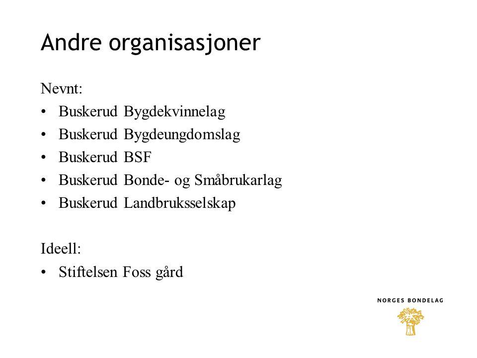 Andre organisasjoner Nevnt: Buskerud Bygdekvinnelag