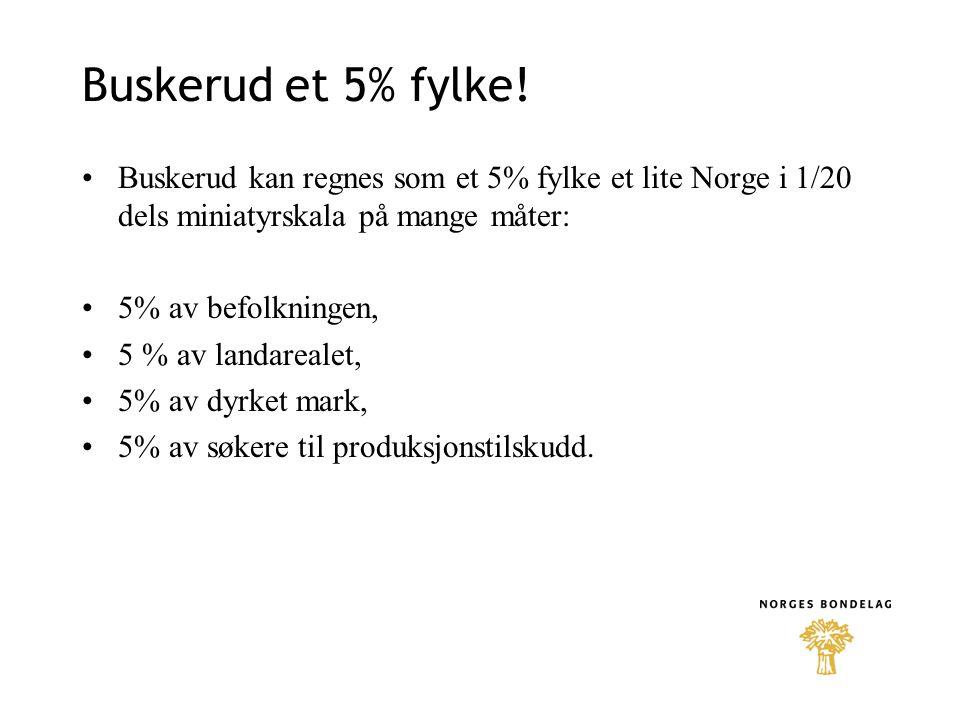Buskerud et 5% fylke! Buskerud kan regnes som et 5% fylke et lite Norge i 1/20 dels miniatyrskala på mange måter: