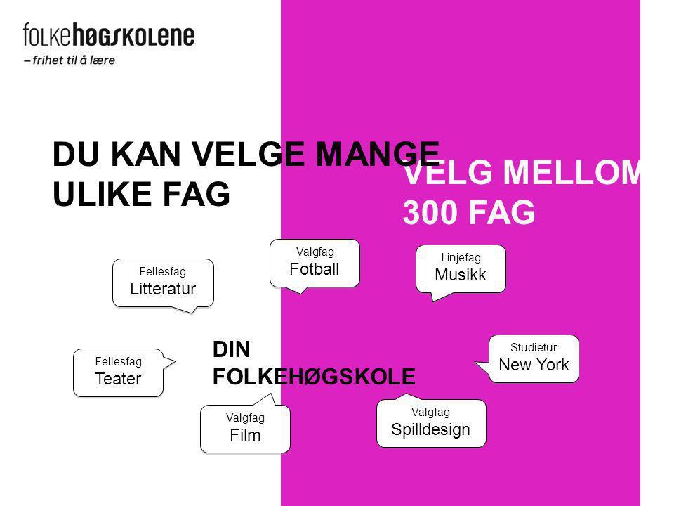 DU KAN VELGE MANGE ULIKE FAG VELG MELLOM 300 FAG DIN FOLKEHØGSKOLE