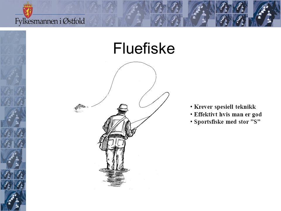 Fluefiske Krever spesiell teknikk Effektivt hvis man er god
