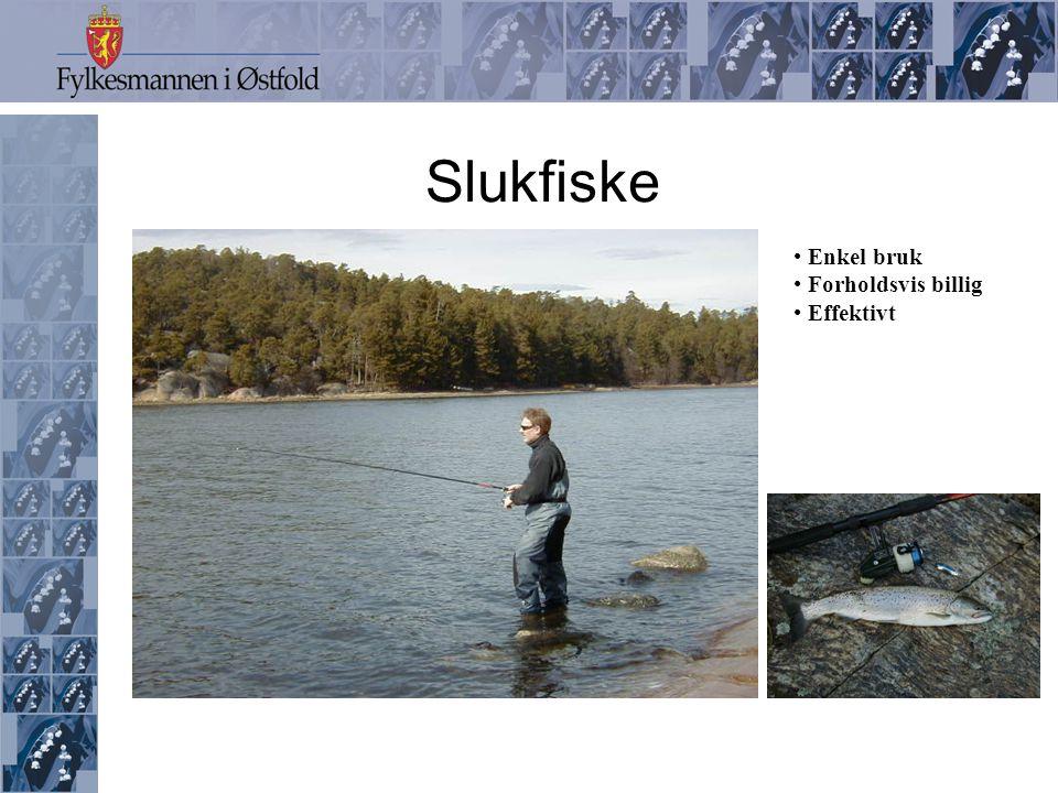 Slukfiske Enkel bruk Forholdsvis billig Effektivt