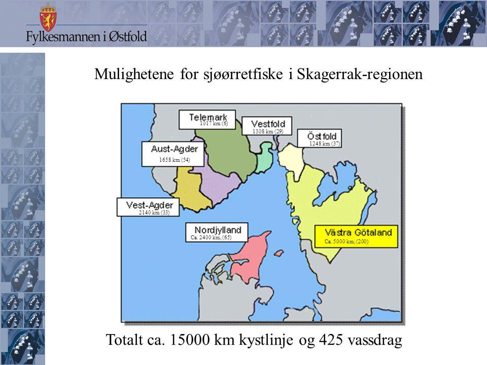 Mulighetene for sjøørretfiske i Skagerrak-regionen