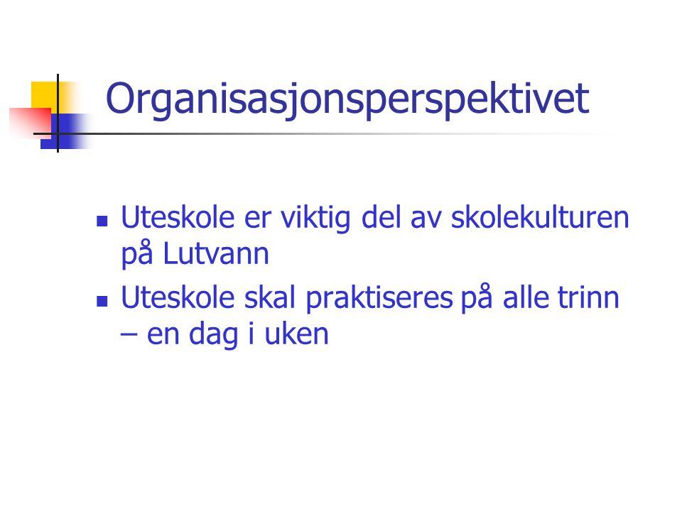 Organisasjonsperspektivet