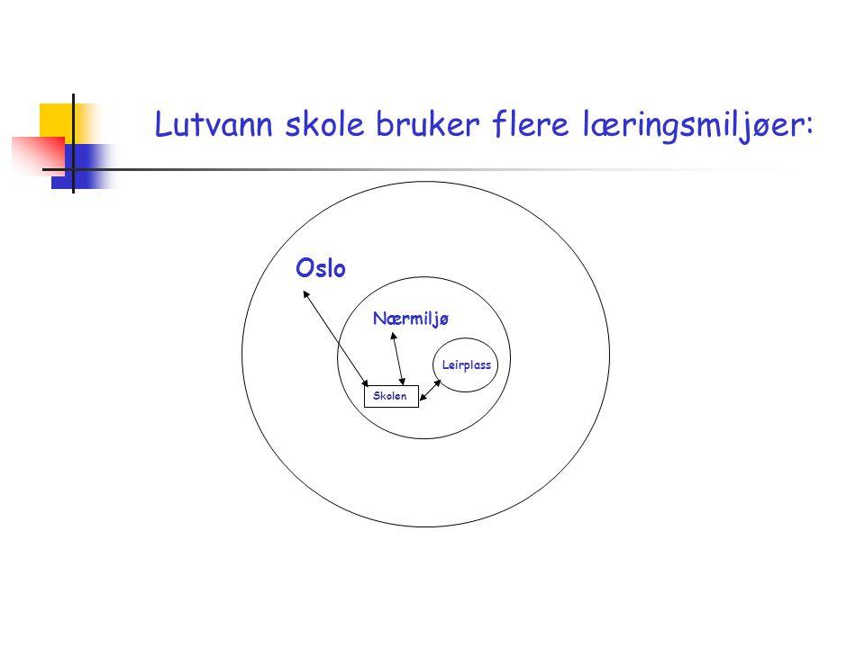 Lutvann skole bruker flere læringsmiljøer: