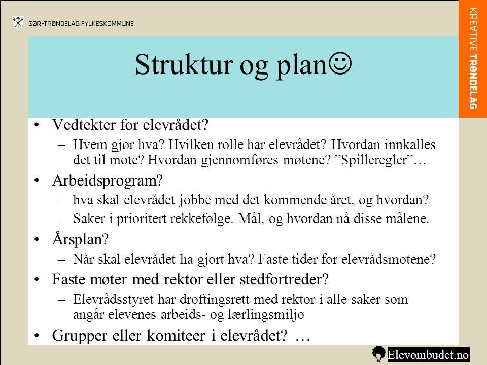 Struktur og plan Grupper eller komiteer i elevrådet …