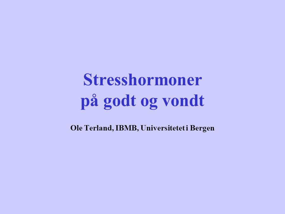 Stresshormoner på godt og vondt