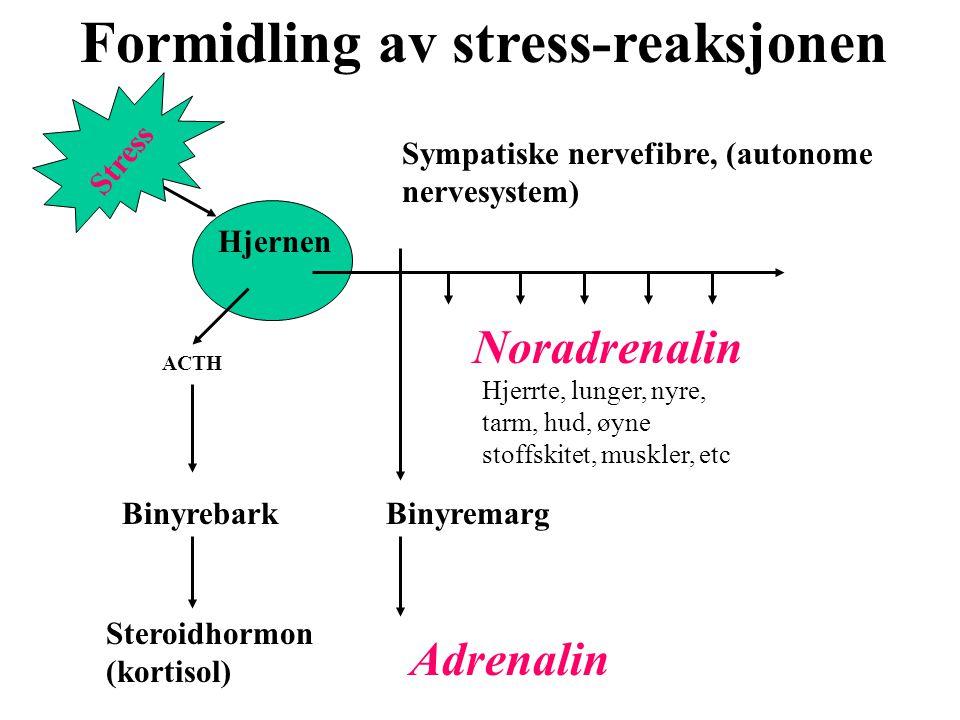 Formidling av stress-reaksjonen