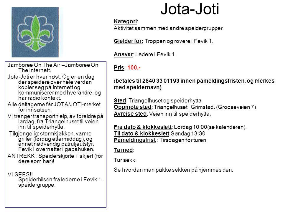 Jota-Joti Kategori: Aktivitet sammen med andre speidergrupper.