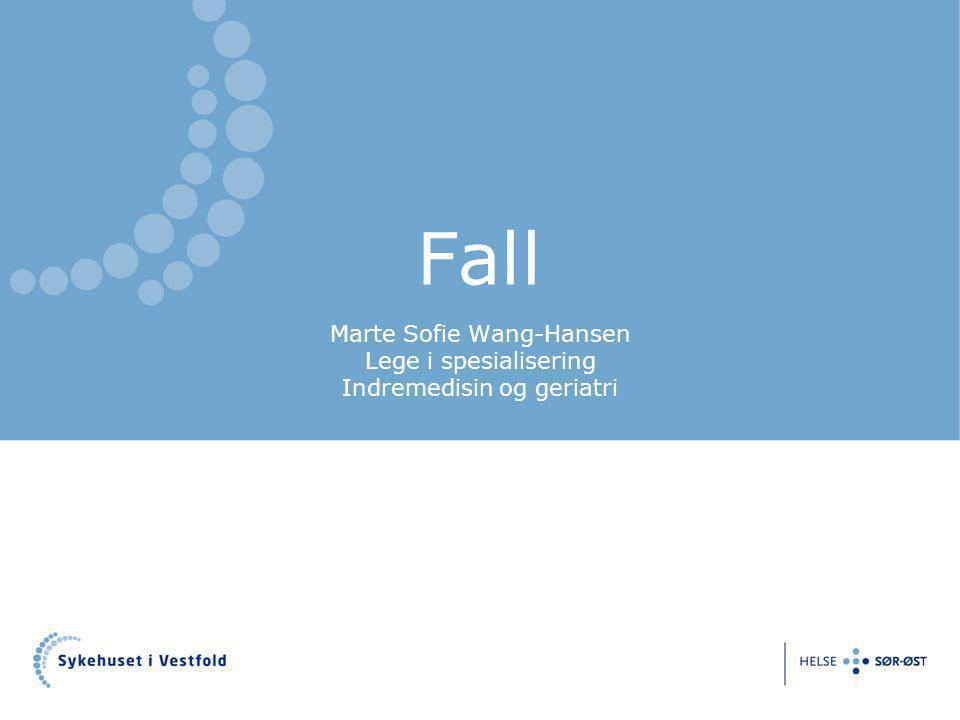 Marte Sofie Wang-Hansen Lege i spesialisering Indremedisin og geriatri