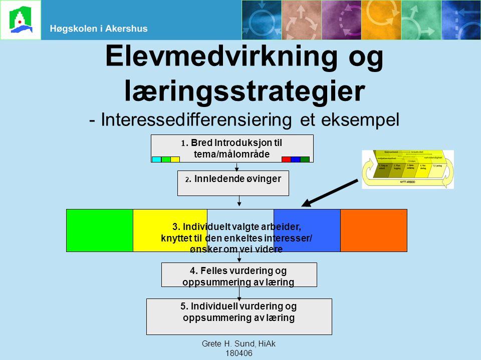 Elevmedvirkning og læringsstrategier - Interessedifferensiering et eksempel