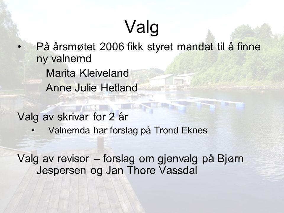 Valg På årsmøtet 2006 fikk styret mandat til å finne ny valnemd