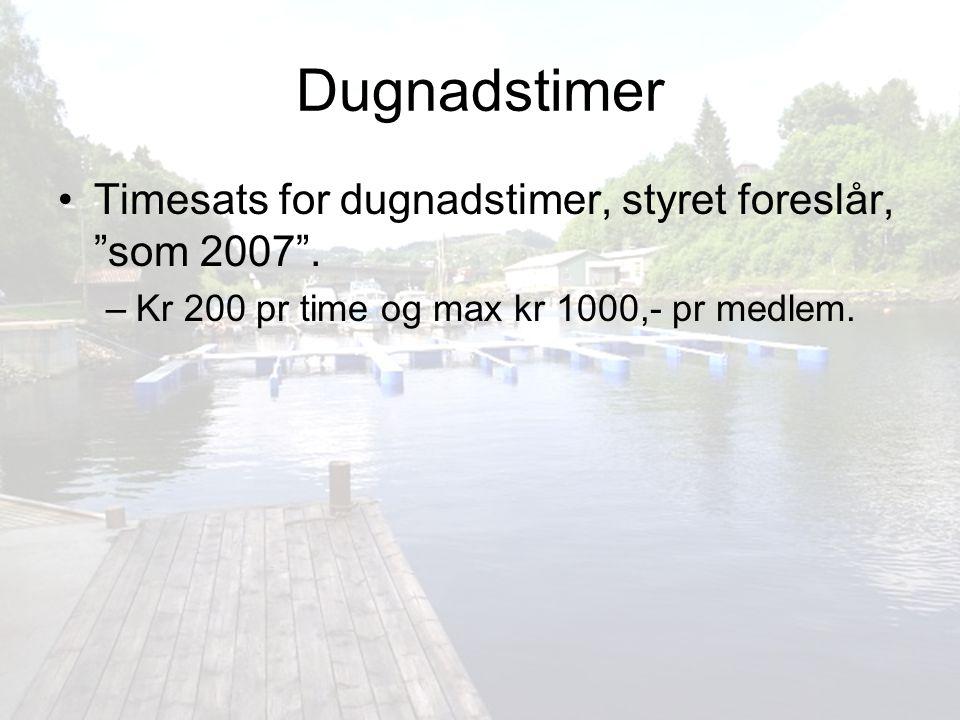 Dugnadstimer Timesats for dugnadstimer, styret foreslår, som 2007 .