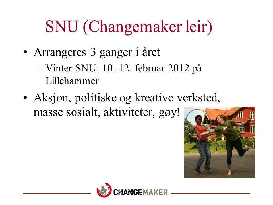 SNU (Changemaker leir)
