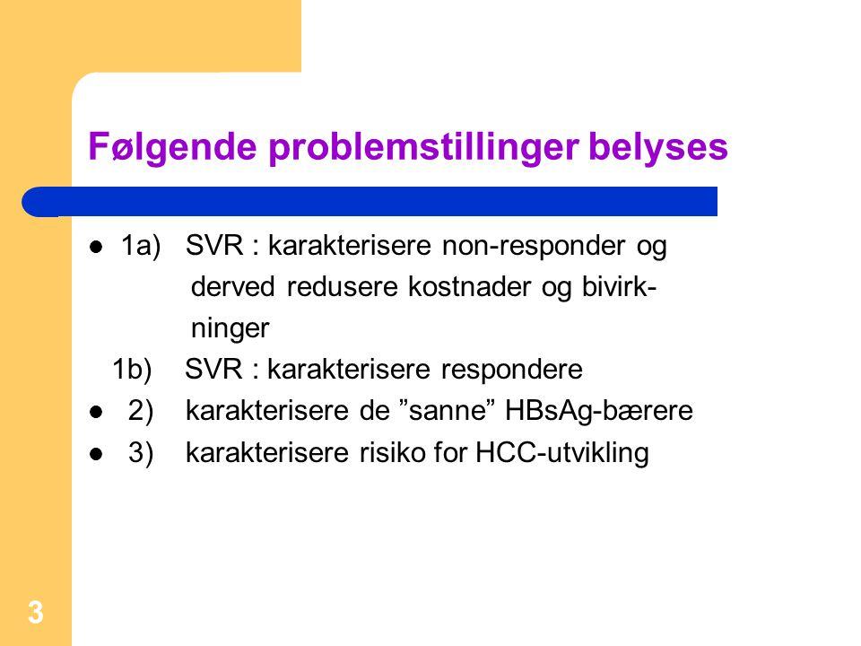 Følgende problemstillinger belyses