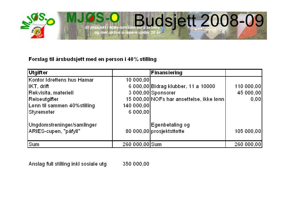 Budsjett 2008-09