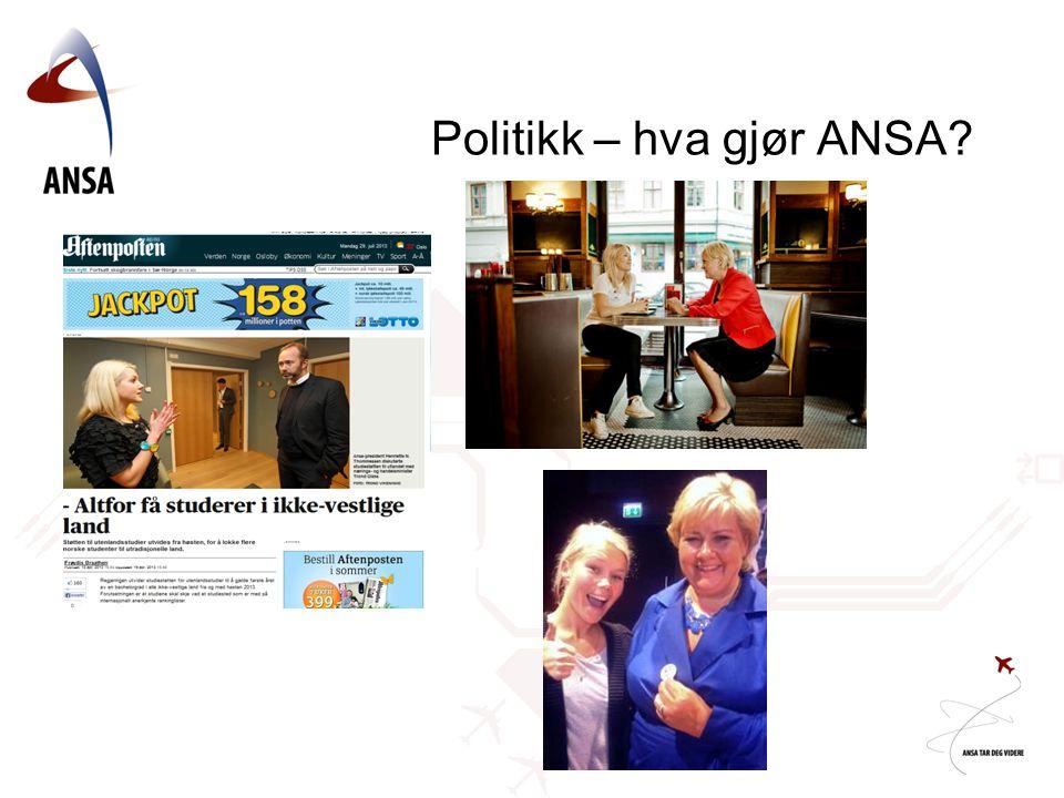 Politikk – hva gjør ANSA