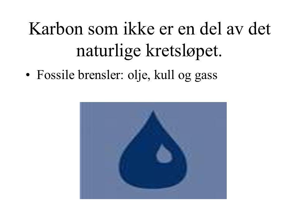 Karbon som ikke er en del av det naturlige kretsløpet.