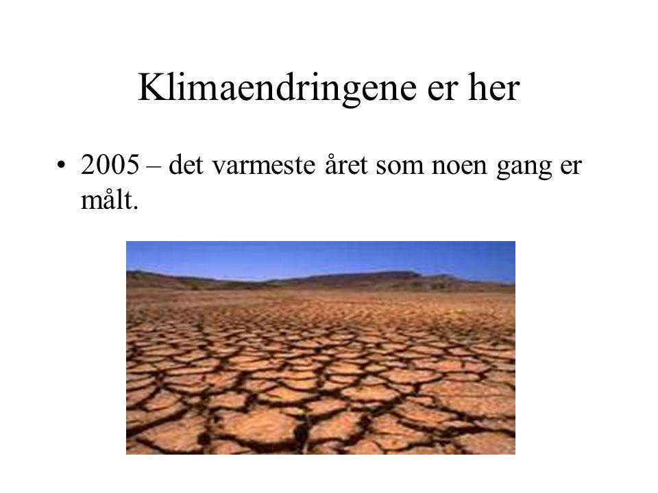 Klimaendringene er her