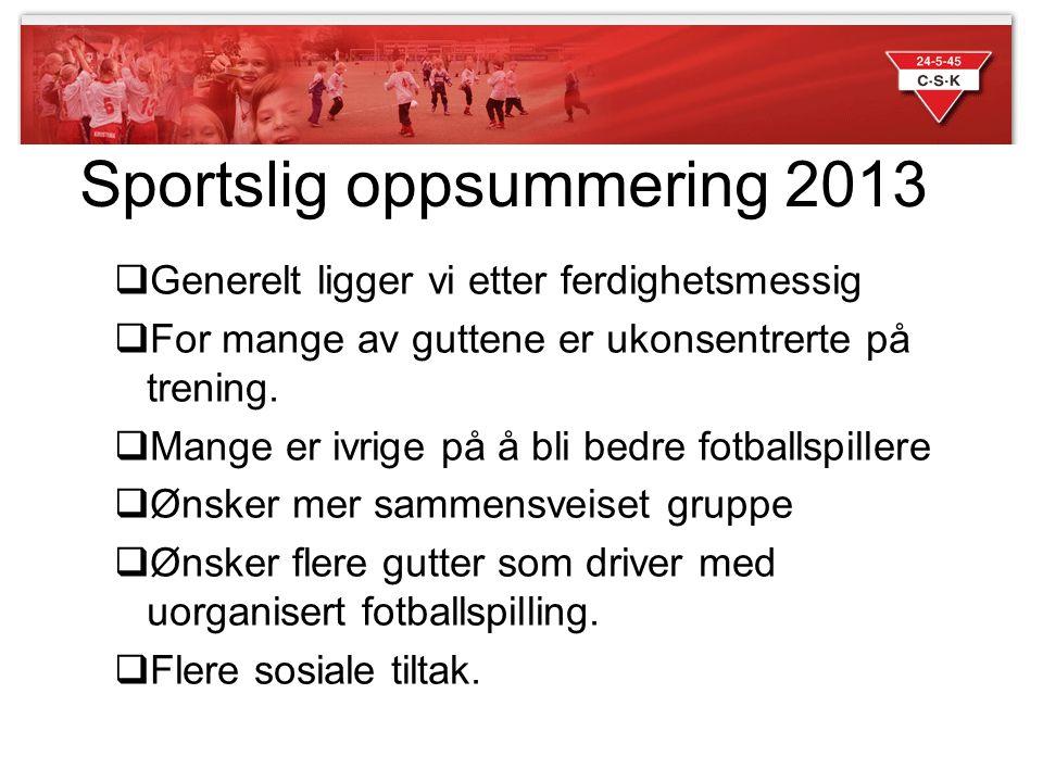 Sportslig oppsummering 2013