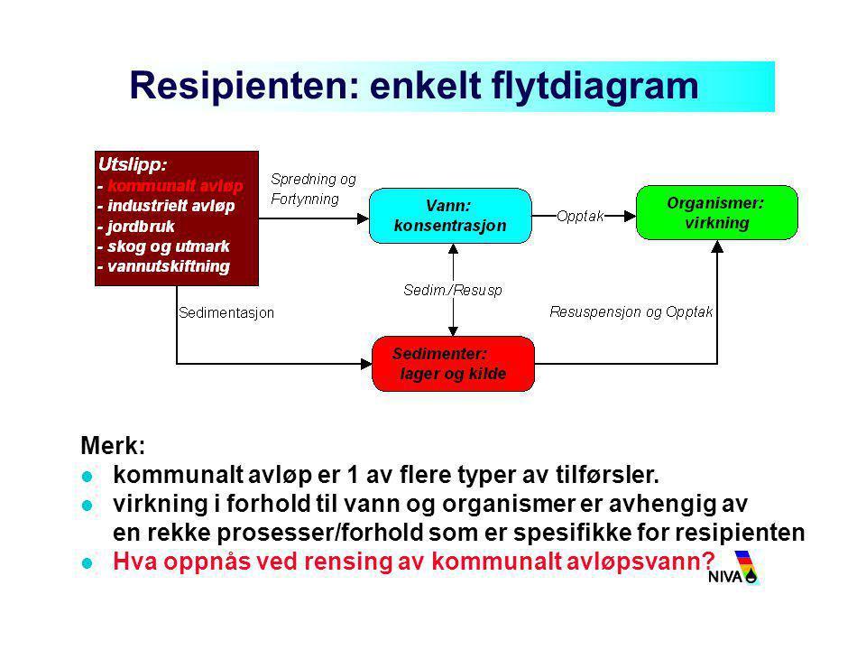 Resipienten: enkelt flytdiagram
