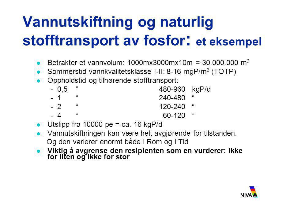 Vannutskiftning og naturlig stofftransport av fosfor: et eksempel