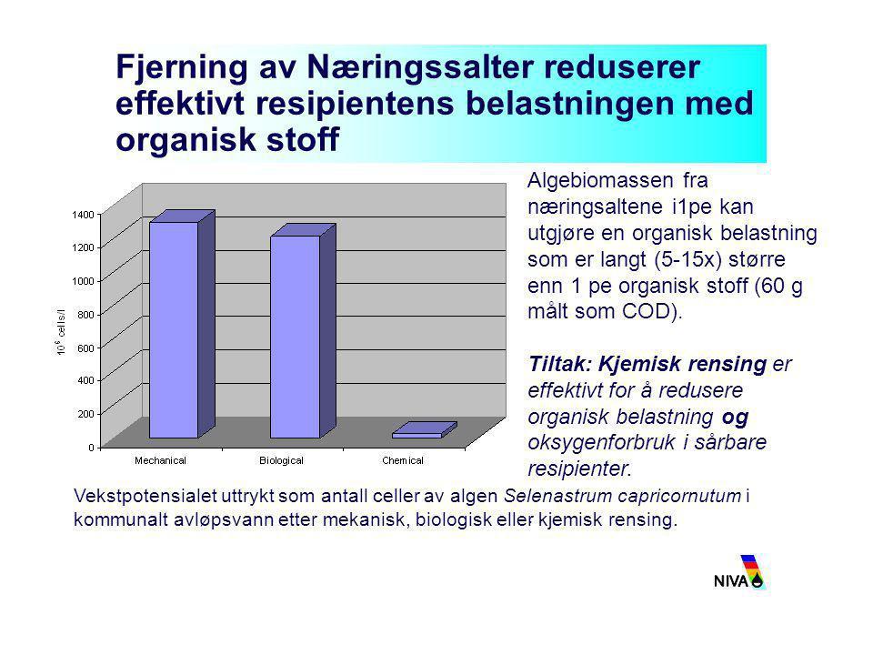 Fjerning av Næringssalter reduserer effektivt resipientens belastningen med organisk stoff