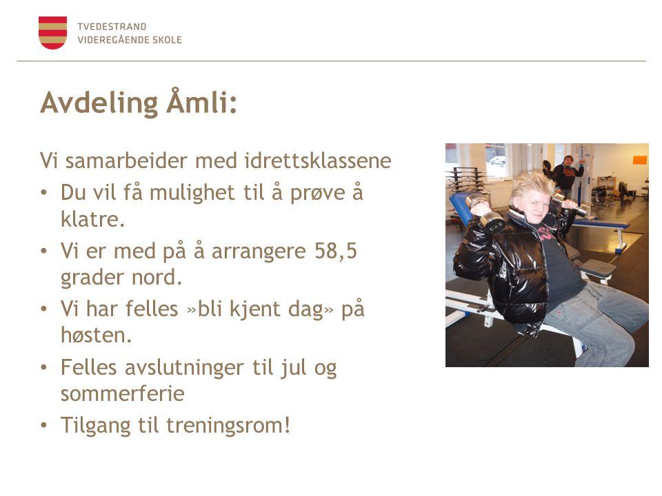 Avdeling Åmli: Vi samarbeider med idrettsklassene