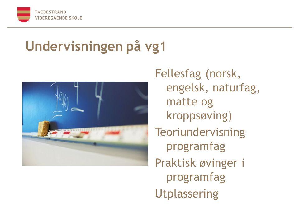 Undervisningen på vg1 Fellesfag (norsk, engelsk, naturfag, matte og kroppsøving) Teoriundervisning programfag.
