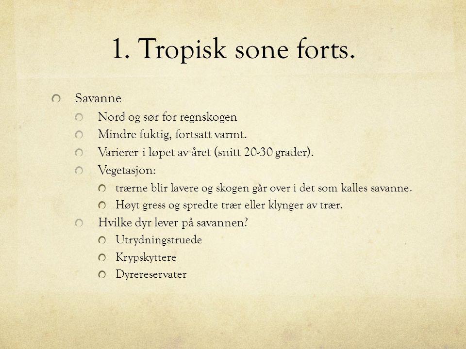 1. Tropisk sone forts. Savanne Nord og sør for regnskogen