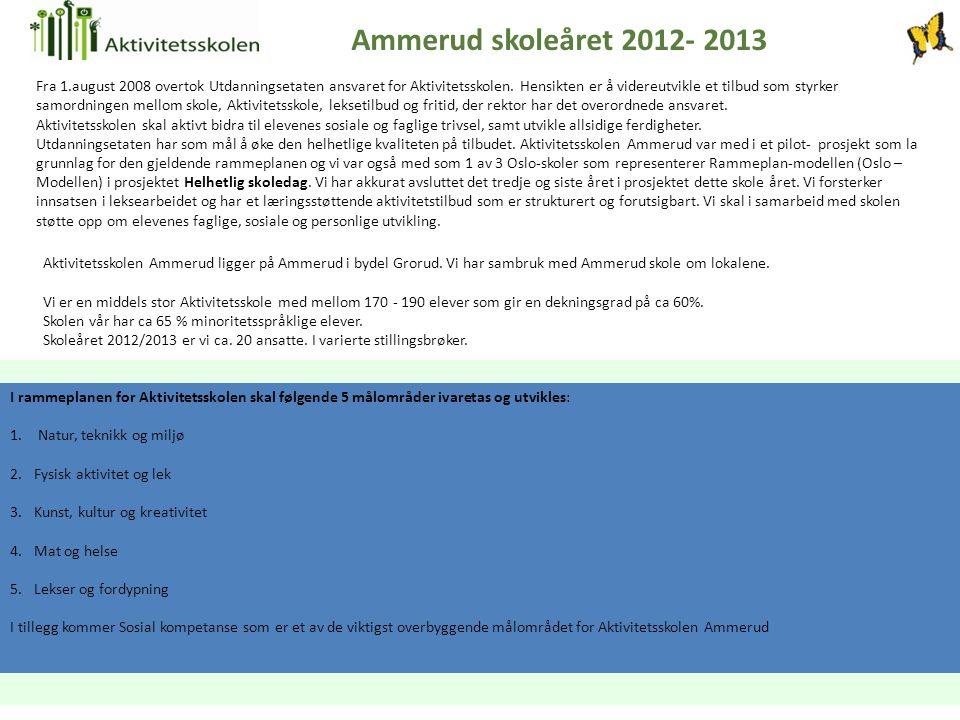 Ammerud skoleåret 2012- 2013