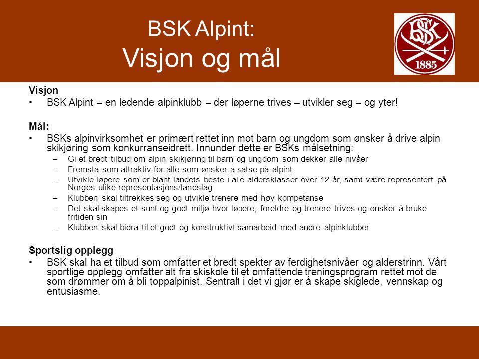 BSK Alpint: Visjon og mål