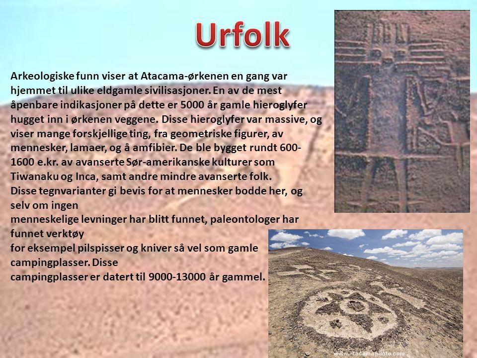 Urfolk