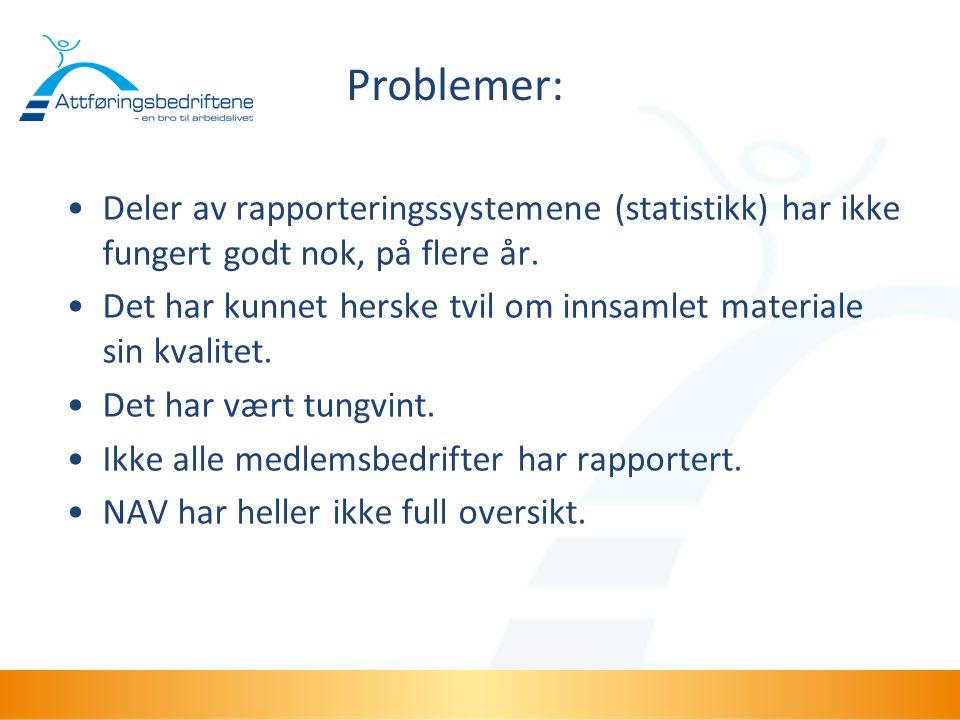 Problemer: Deler av rapporteringssystemene (statistikk) har ikke fungert godt nok, på flere år.