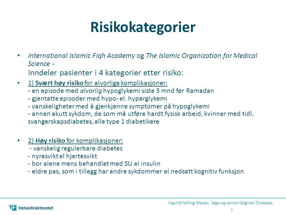 Risikokategorier